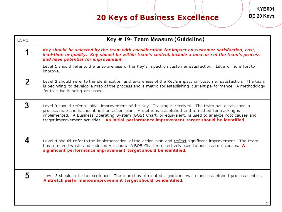 20 Keys of Business Excellence Key # 19- Team Measure (Guideline)
