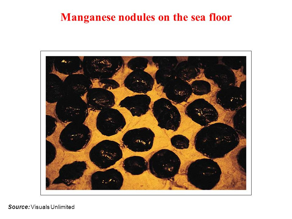 Manganese nodules on the sea floor