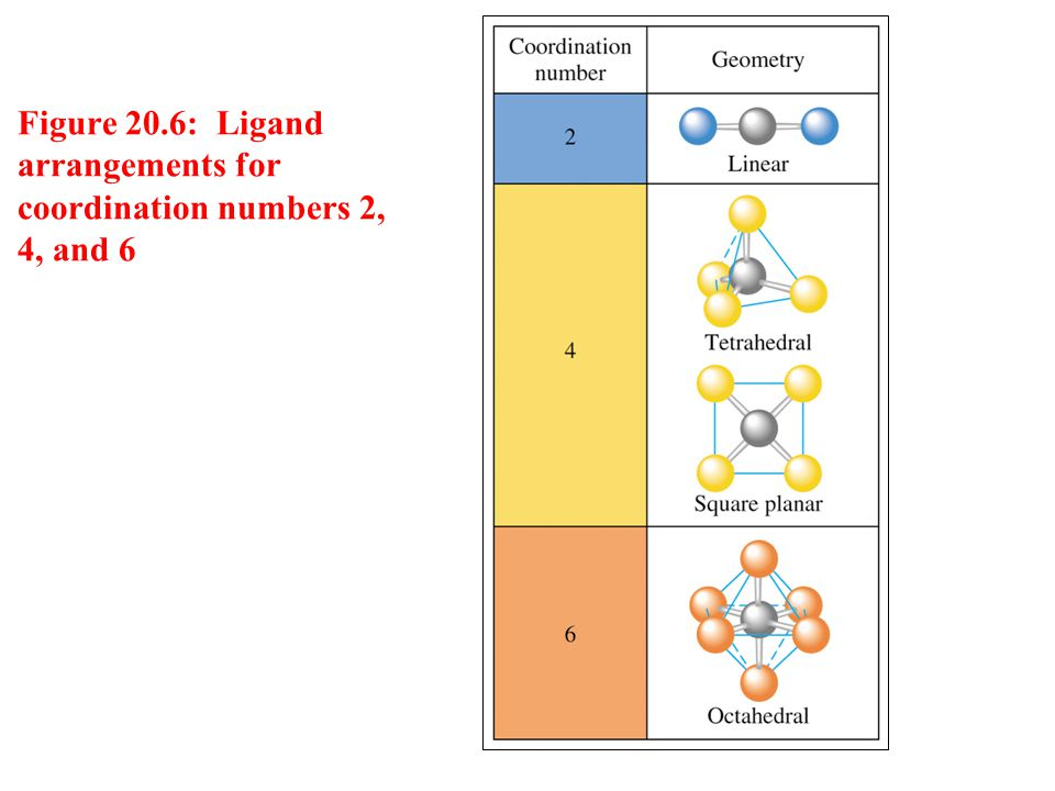 Figure 20.6: Ligand arrangements for coordination numbers 2, 4, and 6