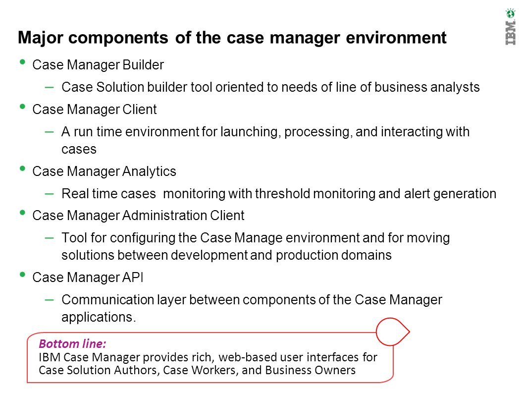 Major components of the case manager environment