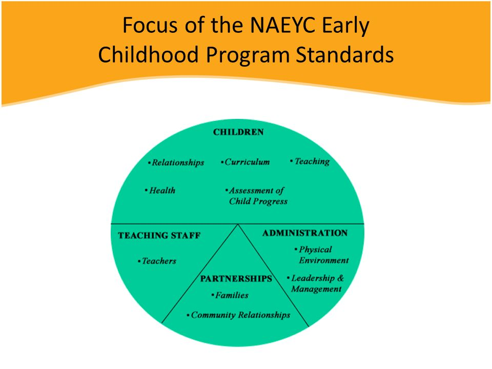 Focus of the NAEYC Early Childhood Program Standards