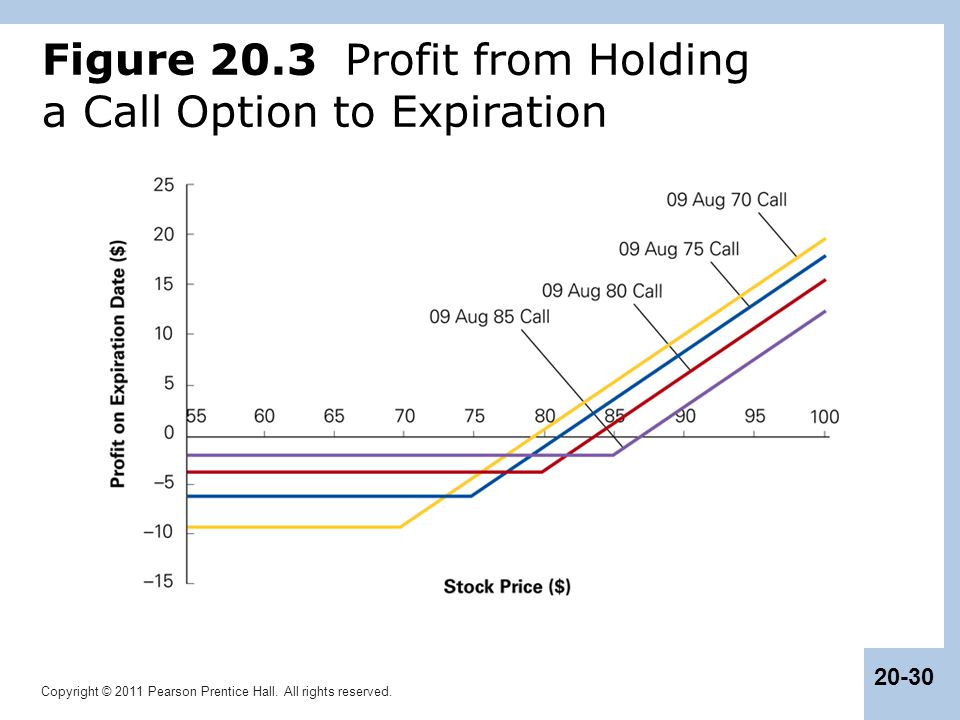 Figure 20.3 Profit from Holding a Call Option to Expiration