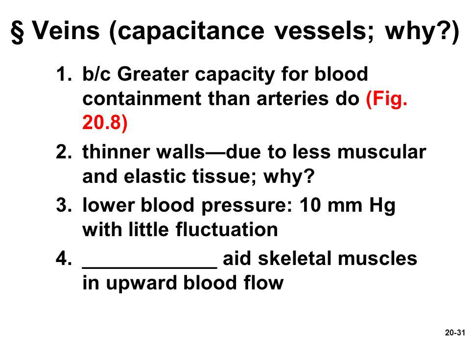 § Veins (capacitance vessels; why )
