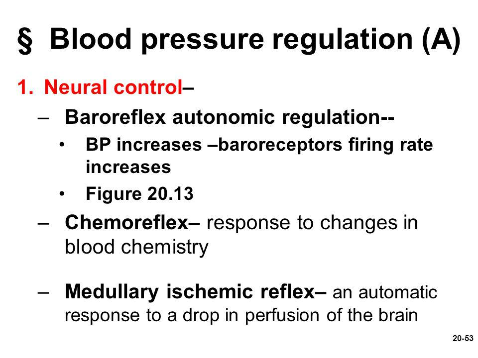 § Blood pressure regulation (A)