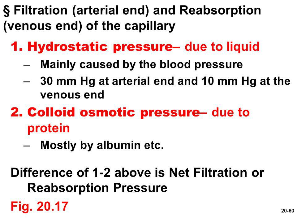 Hydrostatic pressure– due to liquid