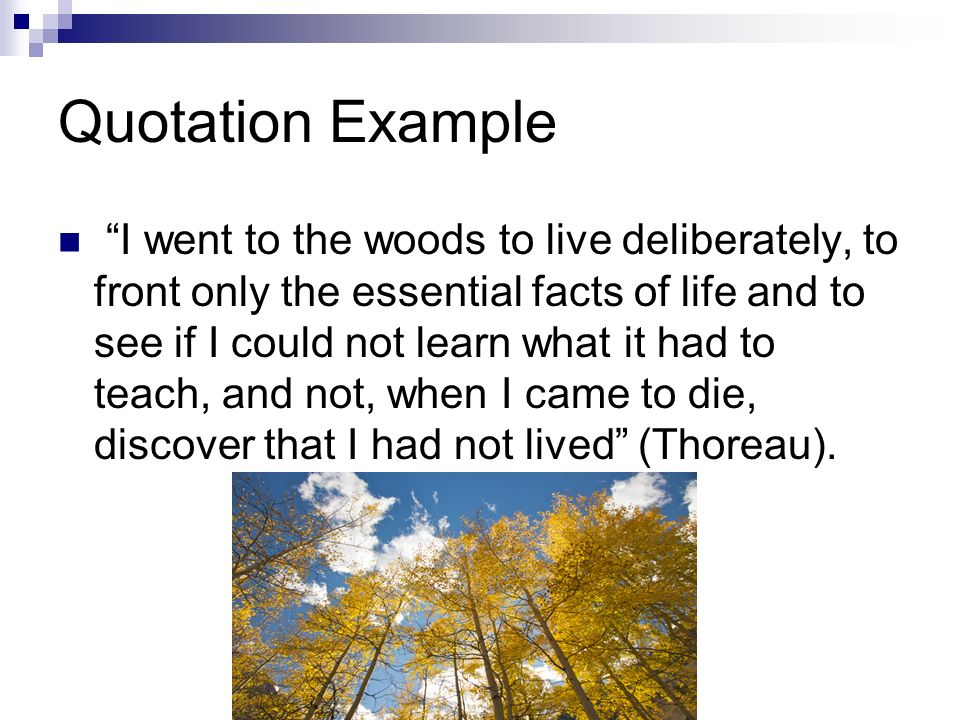 Quotation Example