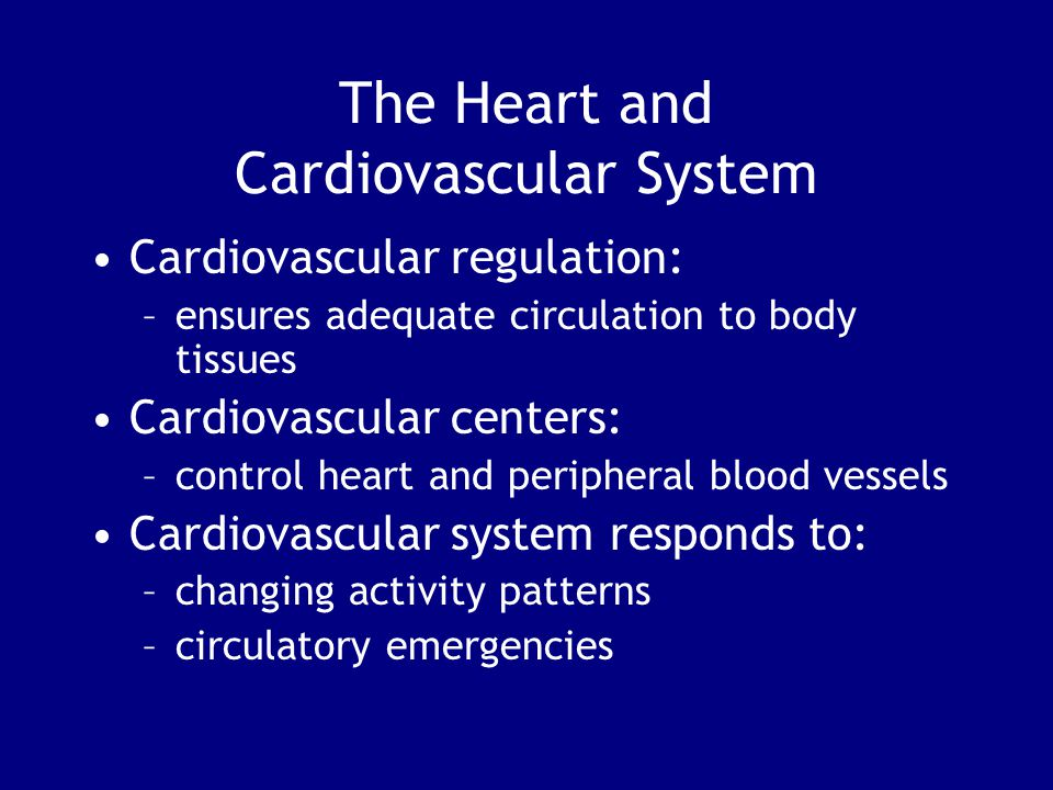 The Heart and Cardiovascular System