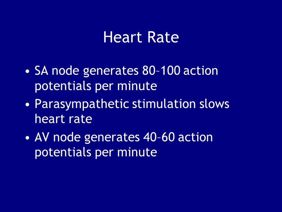 Heart Rate SA node generates 80–100 action potentials per minute