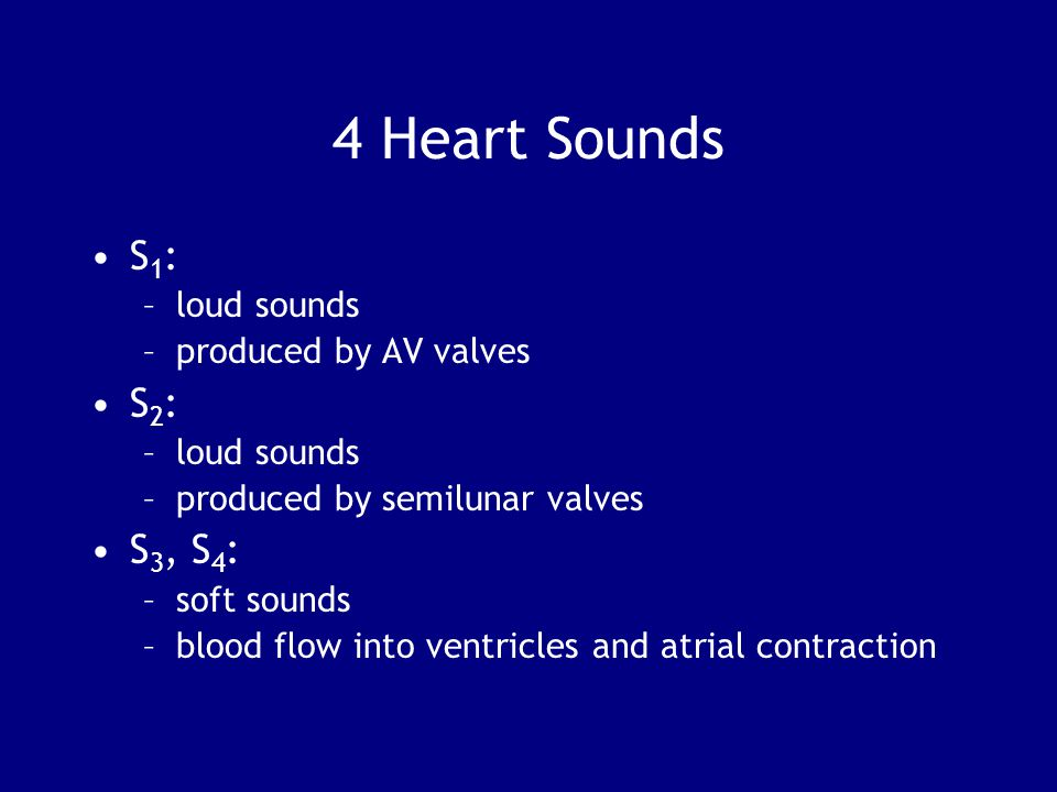 4 Heart Sounds S1: S2: S3, S4: loud sounds produced by AV valves