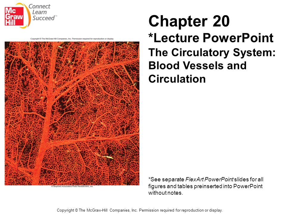 Chapter 20 *Lecture PowerPoint