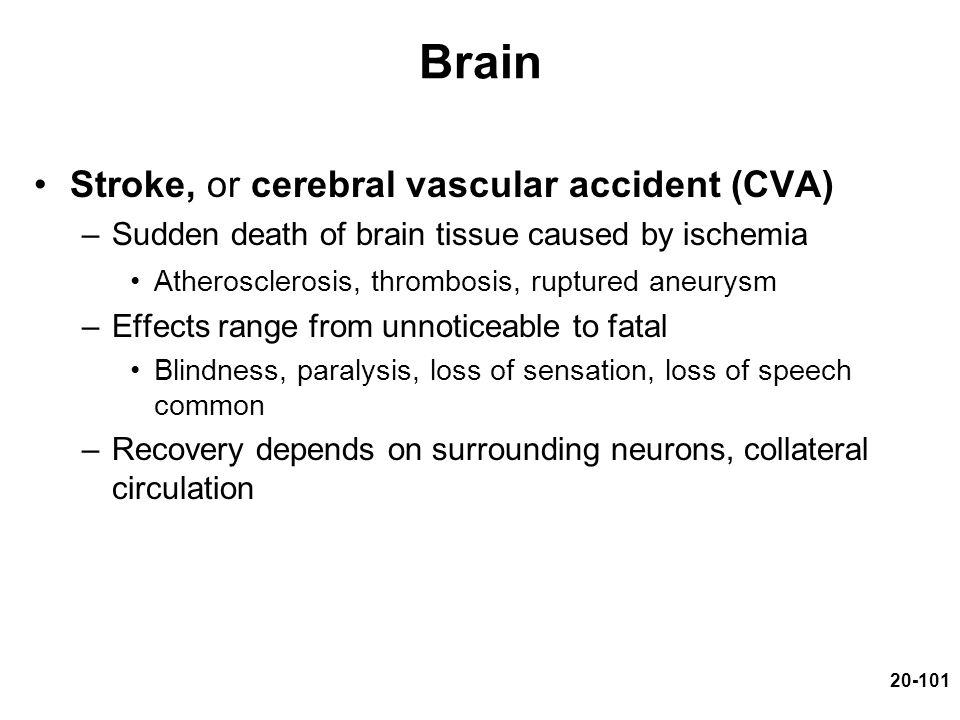 Brain Stroke, or cerebral vascular accident (CVA)
