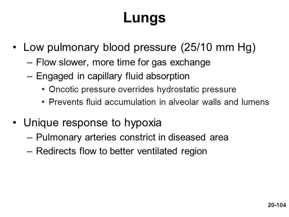 Lungs Low pulmonary blood pressure (25/10 mm Hg)