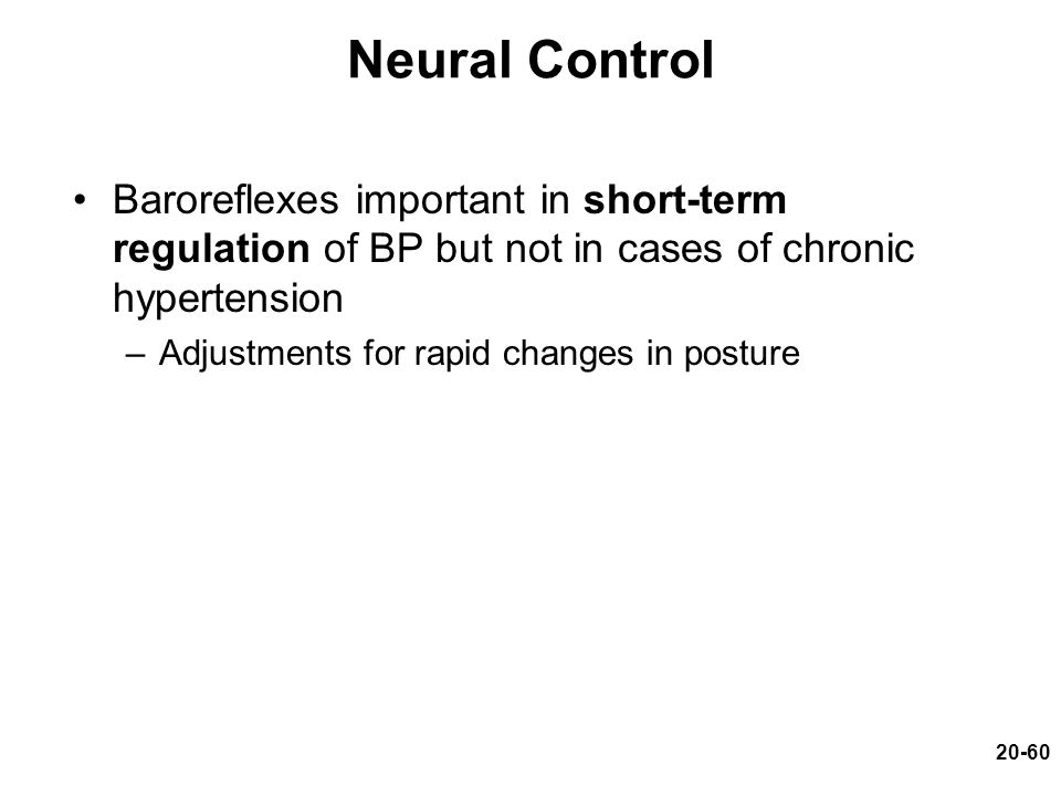 Neural Control Baroreflexes important in short-term regulation of BP but not in cases of chronic hypertension.