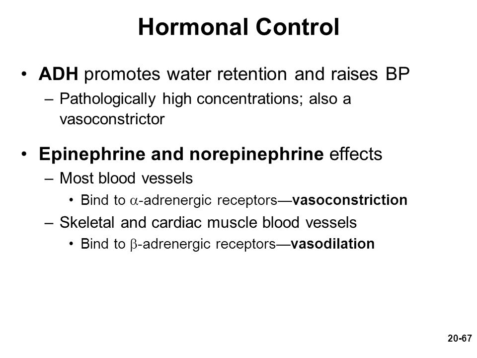 Hormonal Control ADH promotes water retention and raises BP