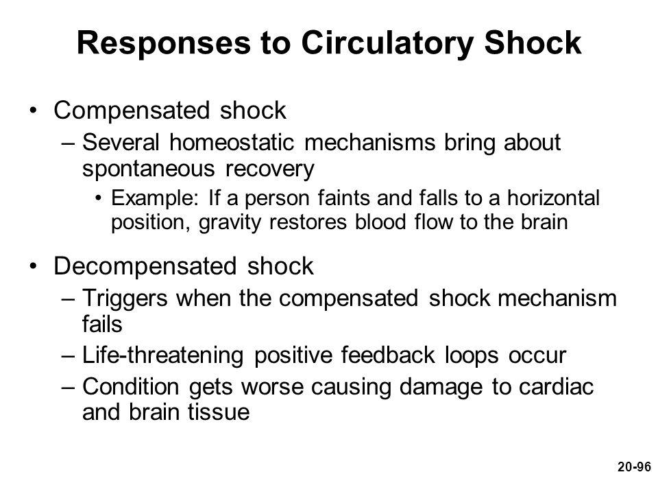 Responses to Circulatory Shock