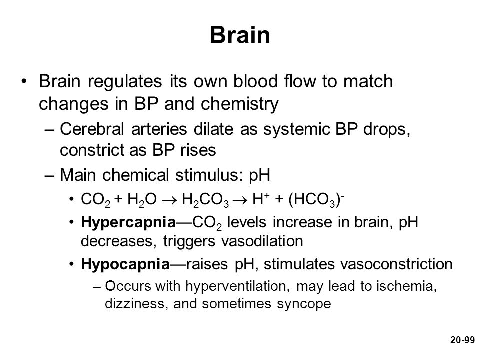 Brain Brain regulates its own blood flow to match changes in BP and chemistry. Cerebral arteries dilate as systemic BP drops, constrict as BP rises.