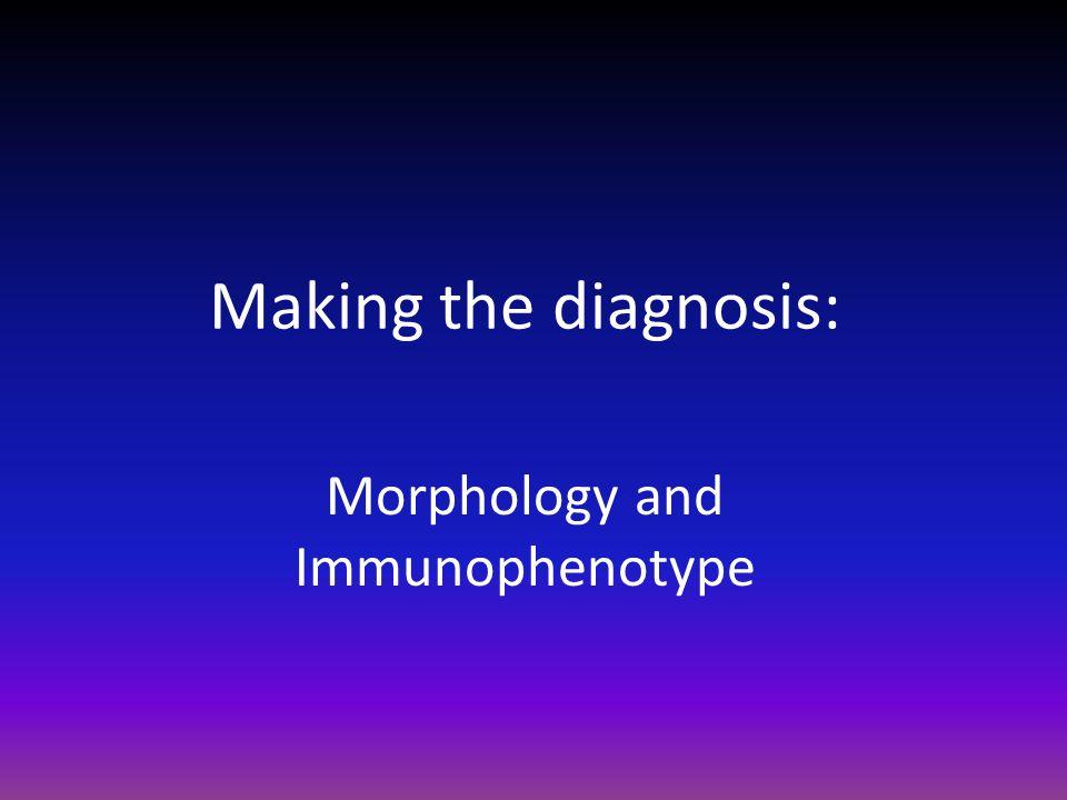 Morphology and Immunophenotype