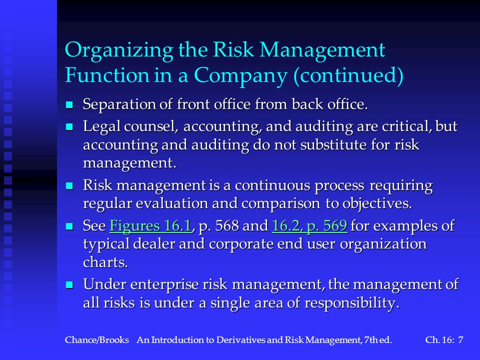 Organizing the Risk Management Function in a Company (continued)