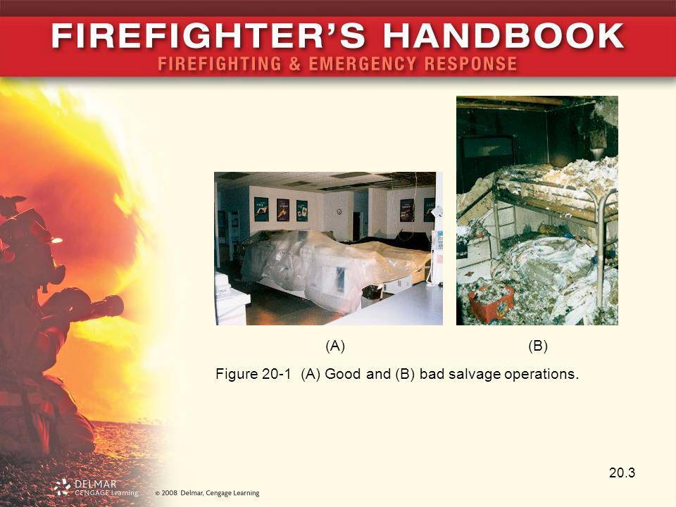 (A) (B) Figure 20-1 (A) Good and (B) bad salvage operations.