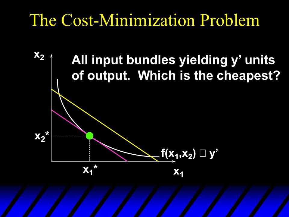 The Cost-Minimization Problem
