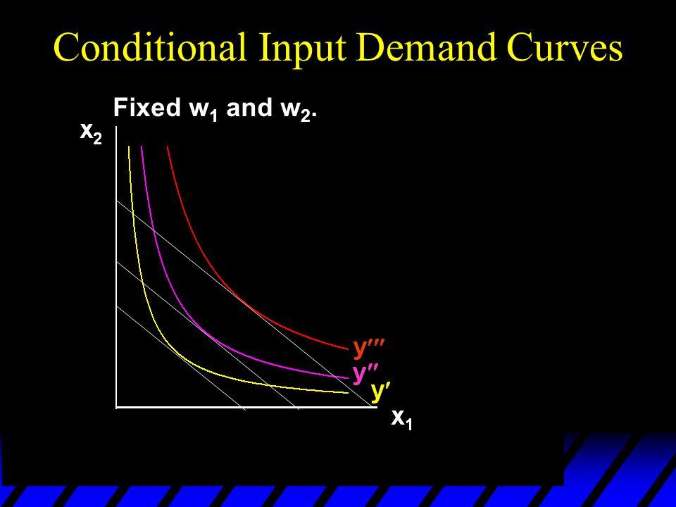 Conditional Input Demand Curves