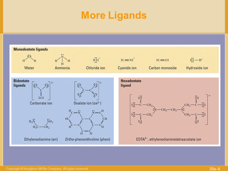 More Ligands Copyright © Houghton Mifflin Company. All rights reserved.