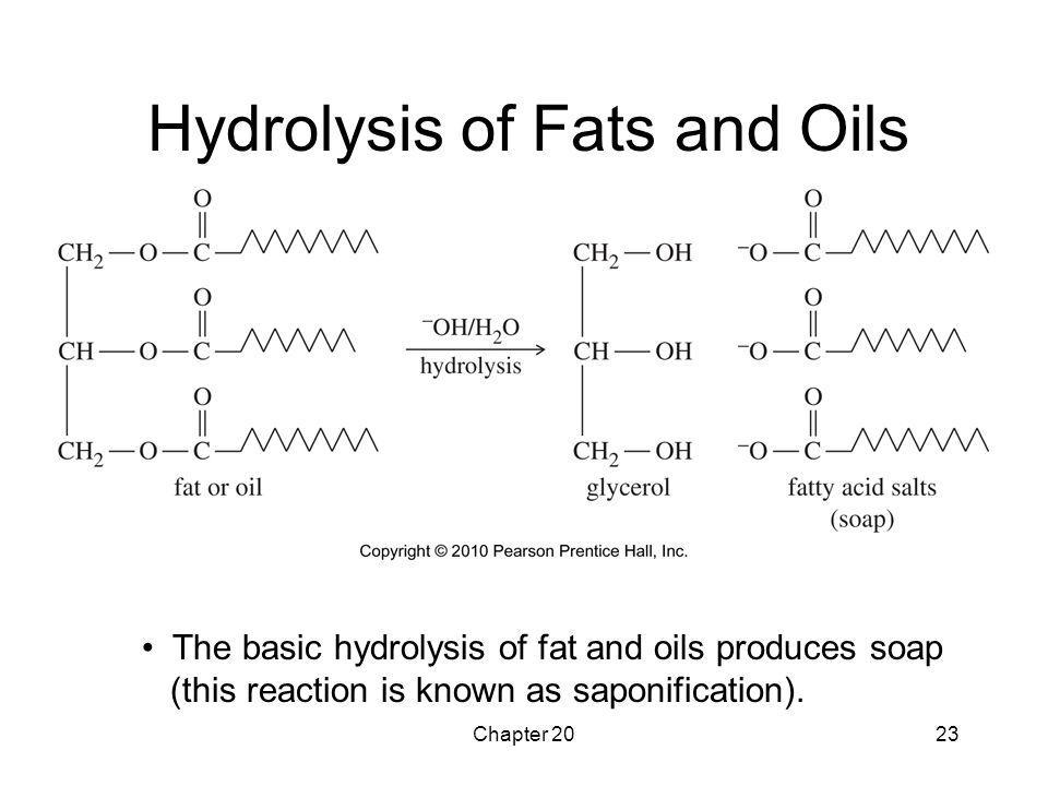 Hydrolysis of Fats and Oils