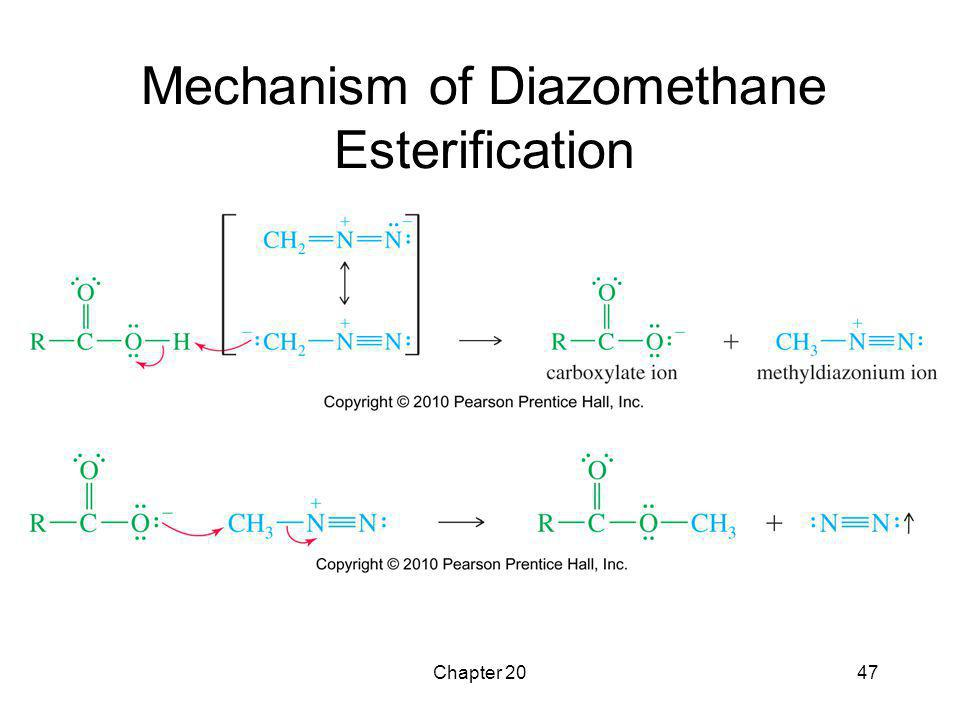 Mechanism of Diazomethane Esterification