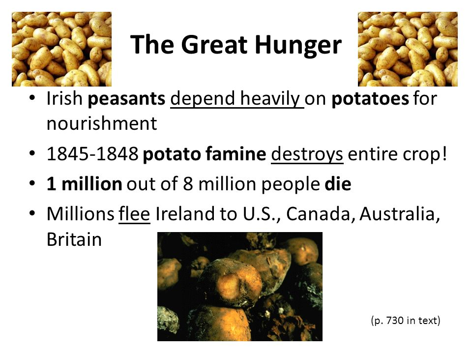 The Great Hunger Irish peasants depend heavily on potatoes for nourishment. 1845-1848 potato famine destroys entire crop!