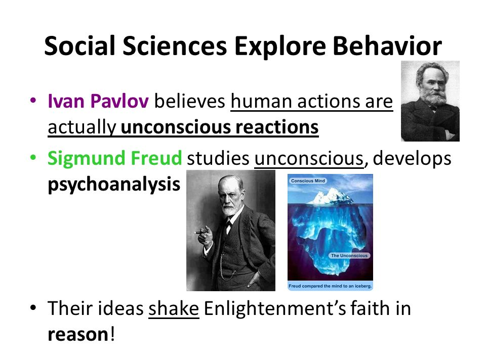 Social Sciences Explore Behavior