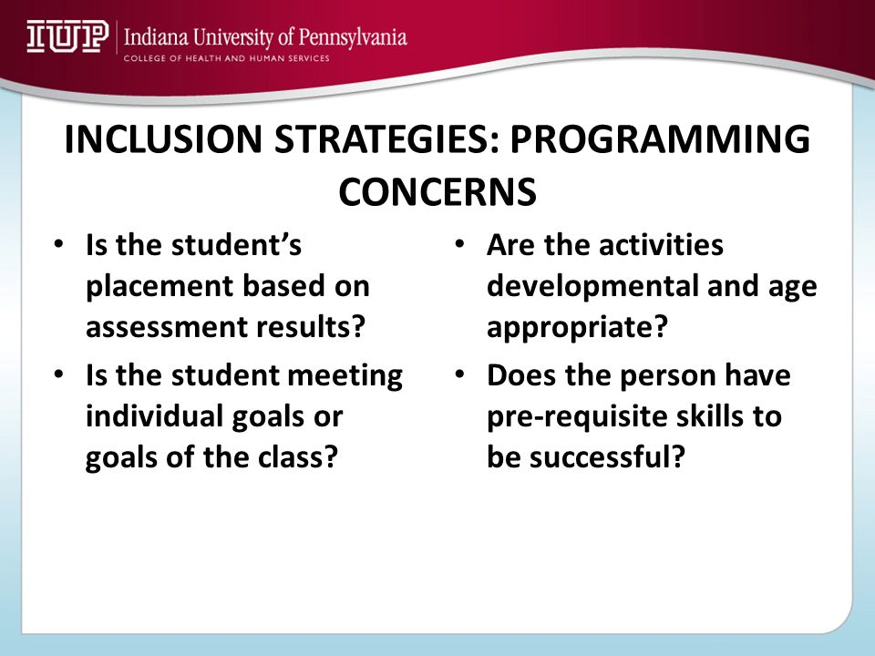 INCLUSION STRATEGIES: PROGRAMMING CONCERNS