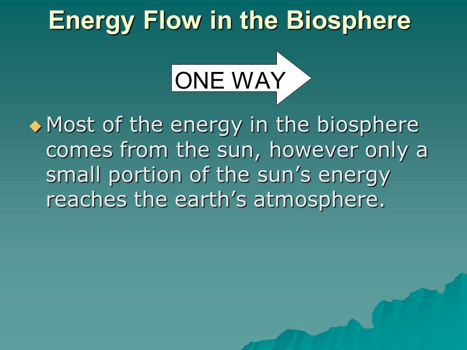 Energy Flow in the Biosphere ONE WAY