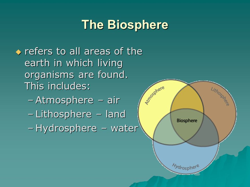 The Biosphere refers to all areas of the earth in which living organisms are found. This includes: