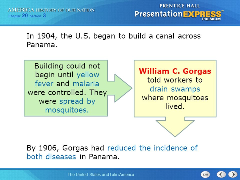 William C. Gorgas told workers to drain swamps where mosquitoes lived.