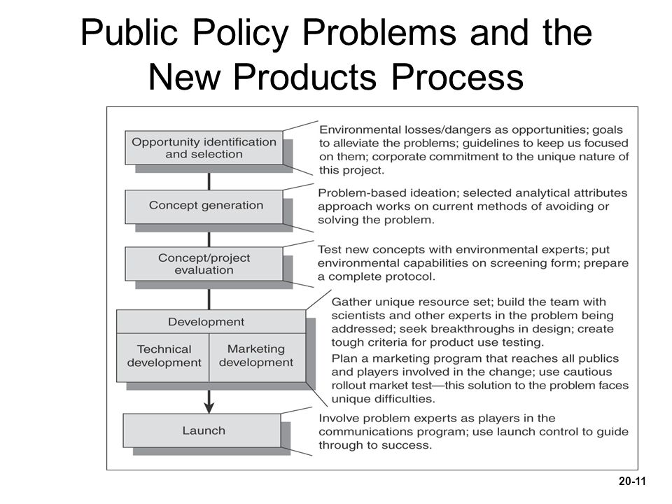 Public Policy Problems and the New Products Process