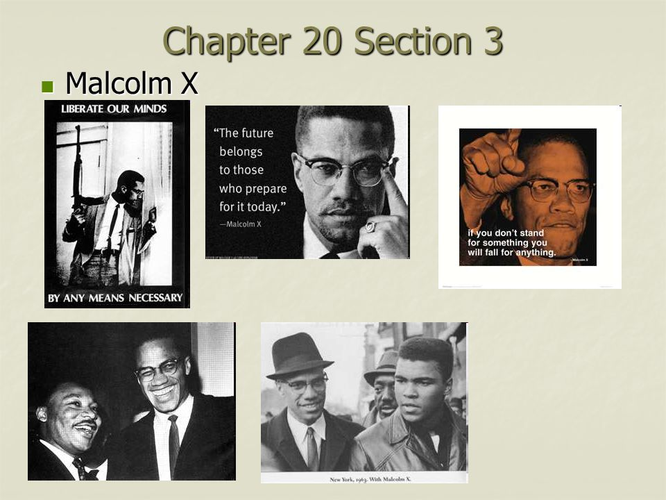 Chapter 20 Section 3 Malcolm X