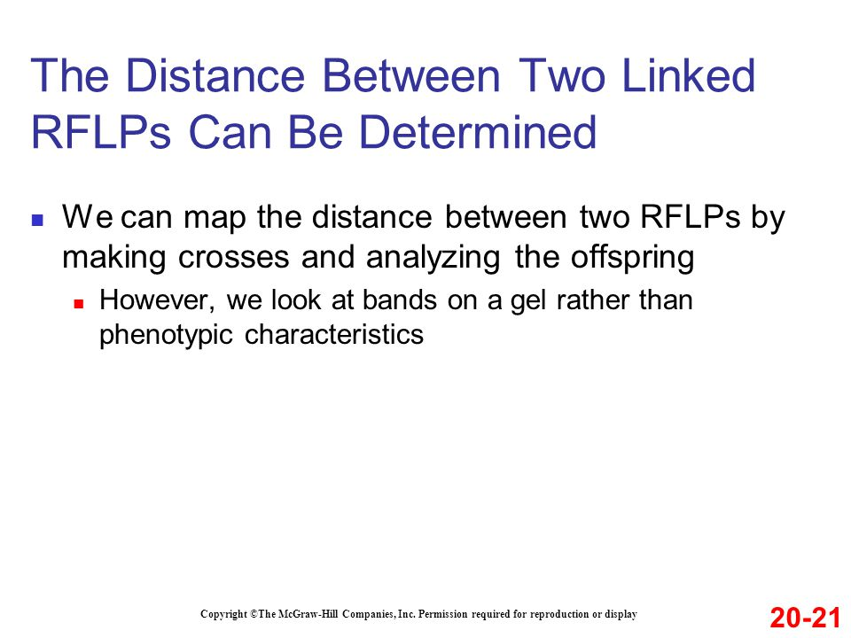 The Distance Between Two Linked RFLPs Can Be Determined