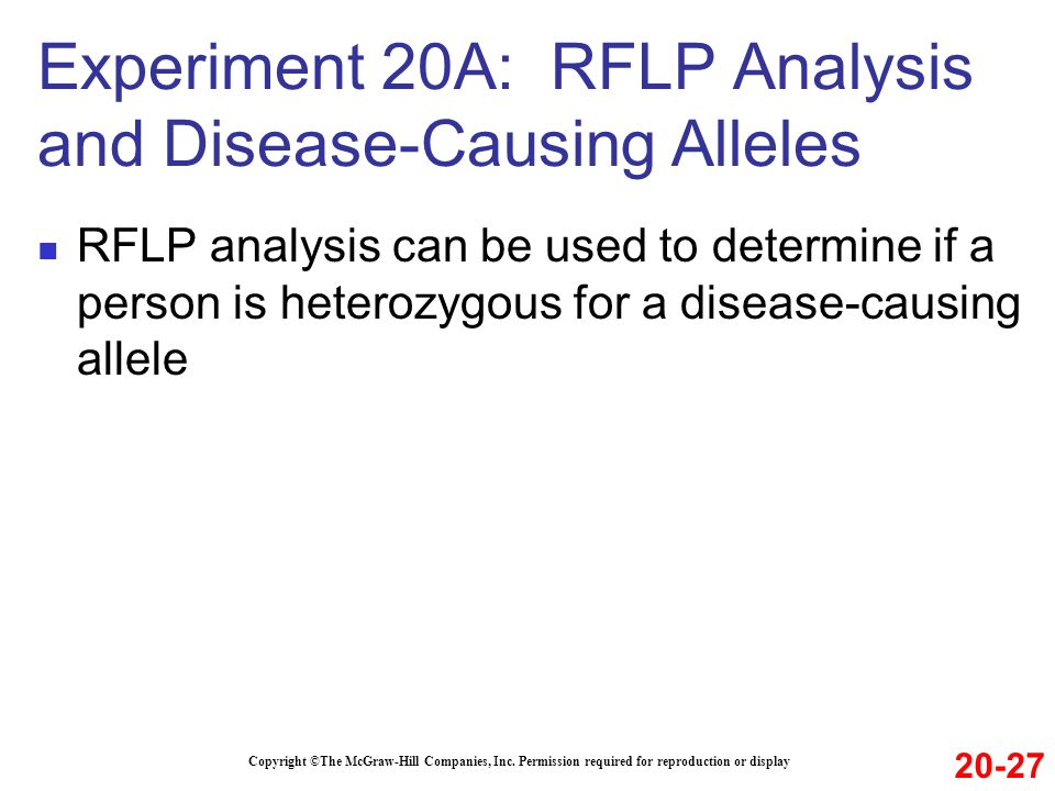 Experiment 20A: RFLP Analysis and Disease-Causing Alleles