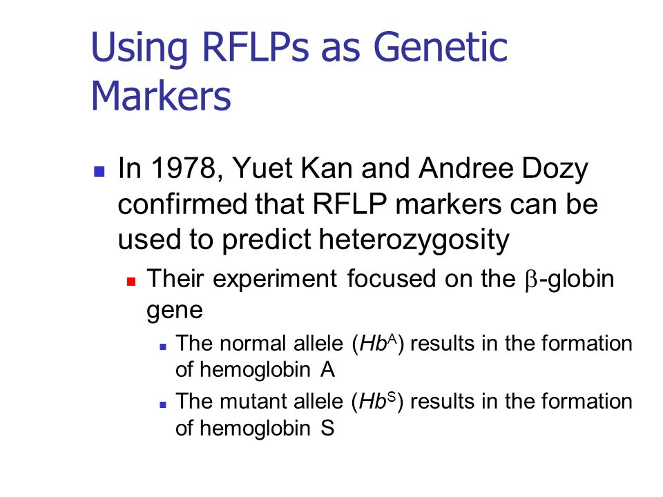 Using RFLPs as Genetic Markers