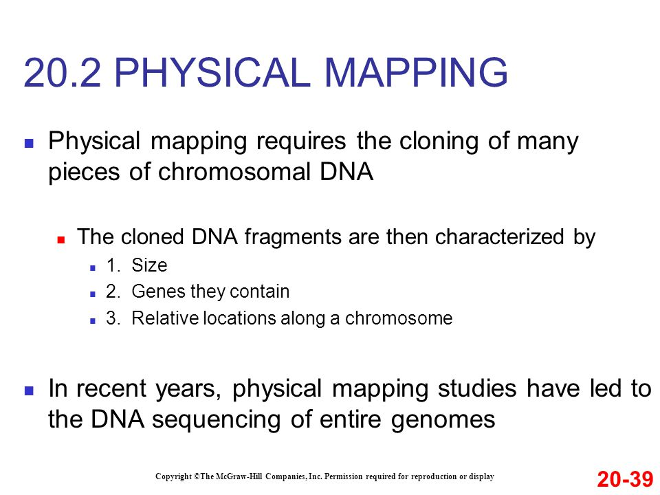 20.2 PHYSICAL MAPPING Physical mapping requires the cloning of many pieces of chromosomal DNA. The cloned DNA fragments are then characterized by.