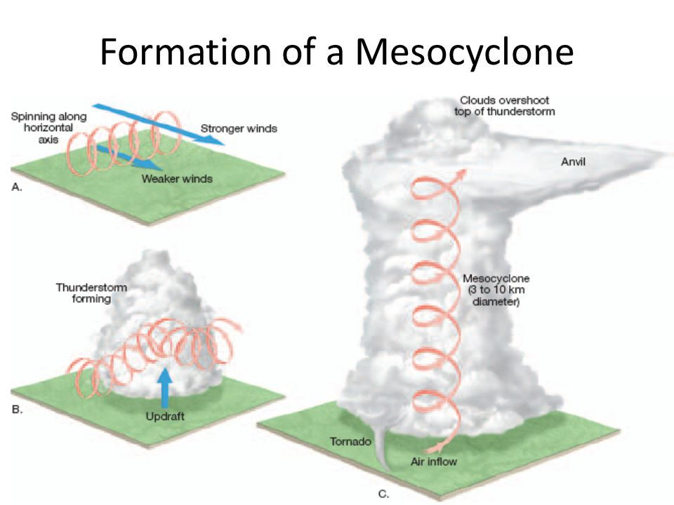 Formation of a Mesocyclone