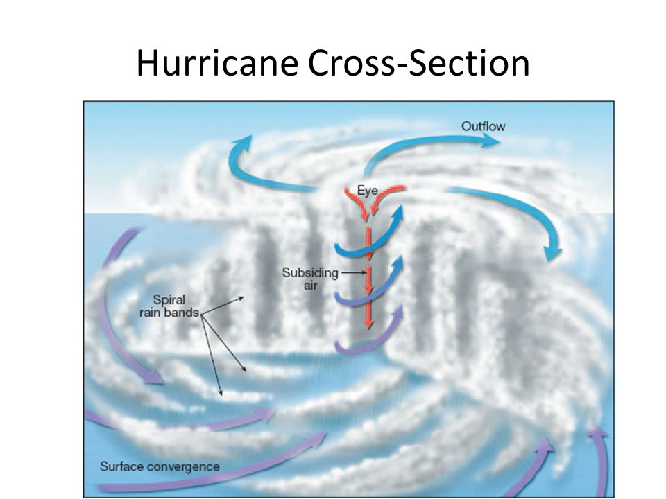 Hurricane Cross-Section