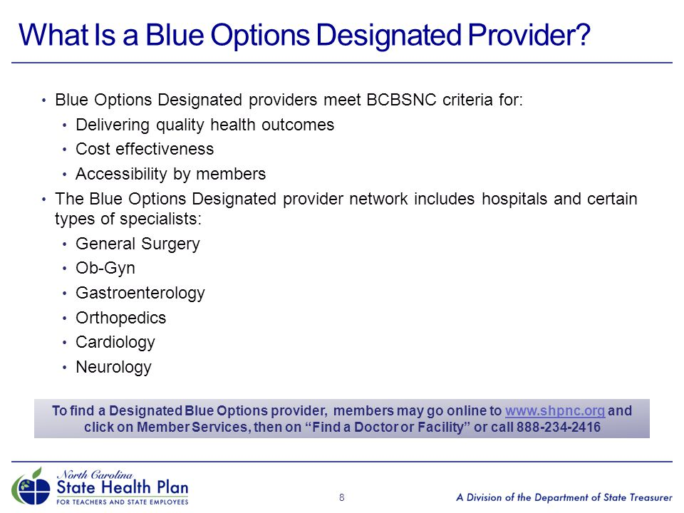 What Is a Blue Options Designated Provider
