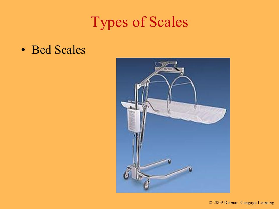 Types of Scales Bed Scales