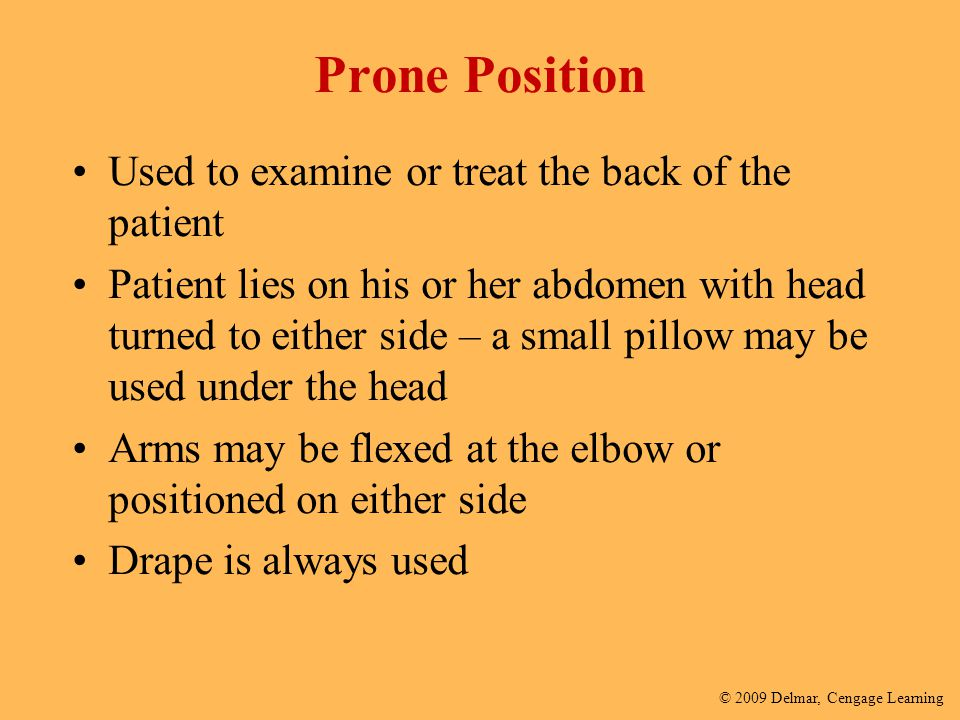 Prone Position Used to examine or treat the back of the patient