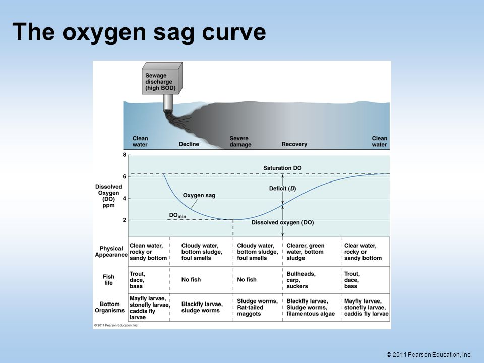 The oxygen sag curve
