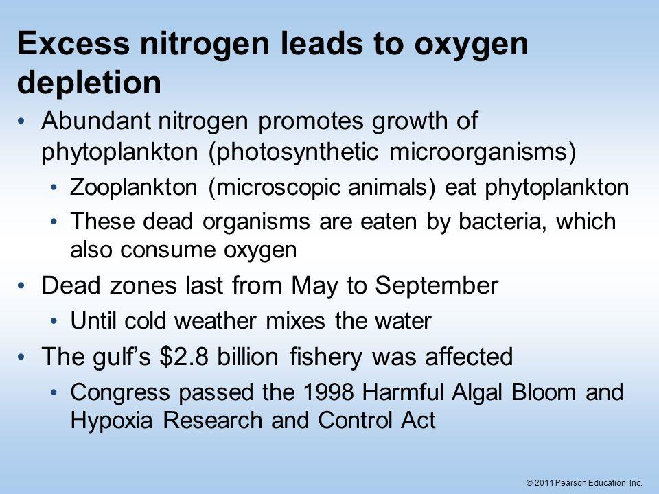 Excess nitrogen leads to oxygen depletion