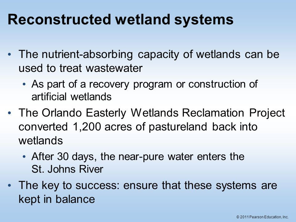 Reconstructed wetland systems