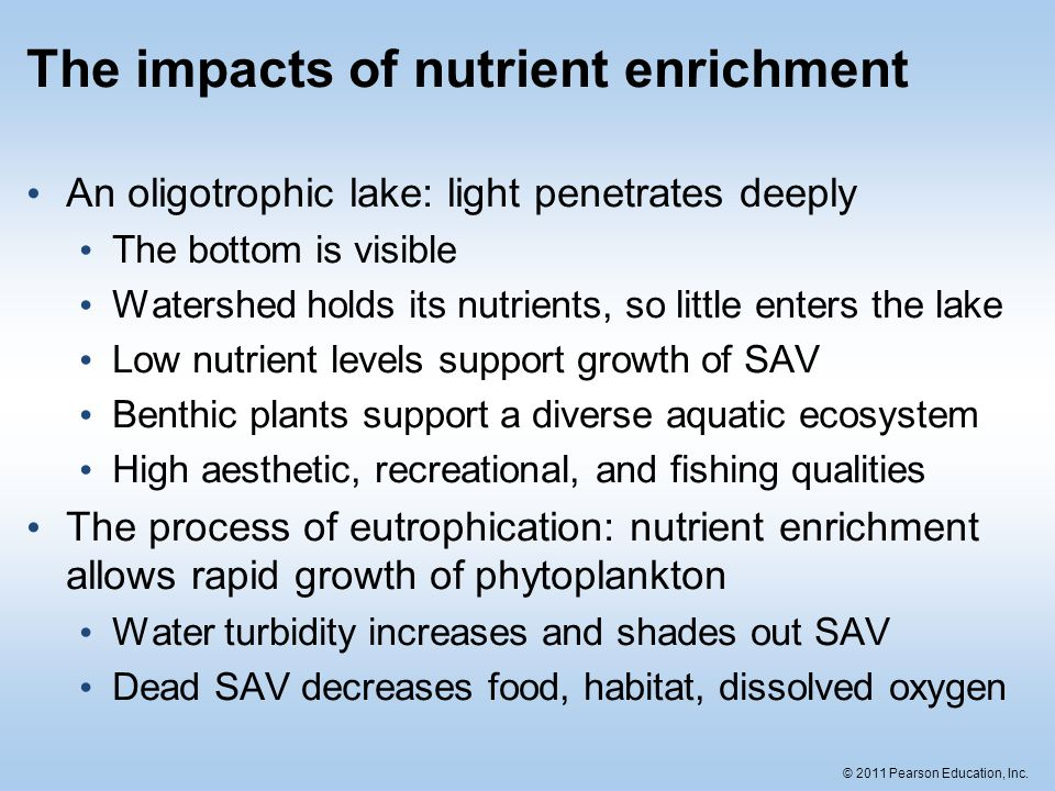 The impacts of nutrient enrichment