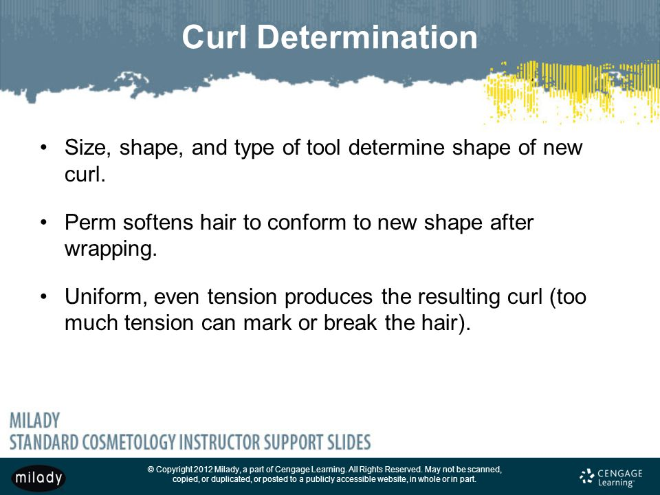 Curl Determination Size, shape, and type of tool determine shape of new curl. Perm softens hair to conform to new shape after wrapping.